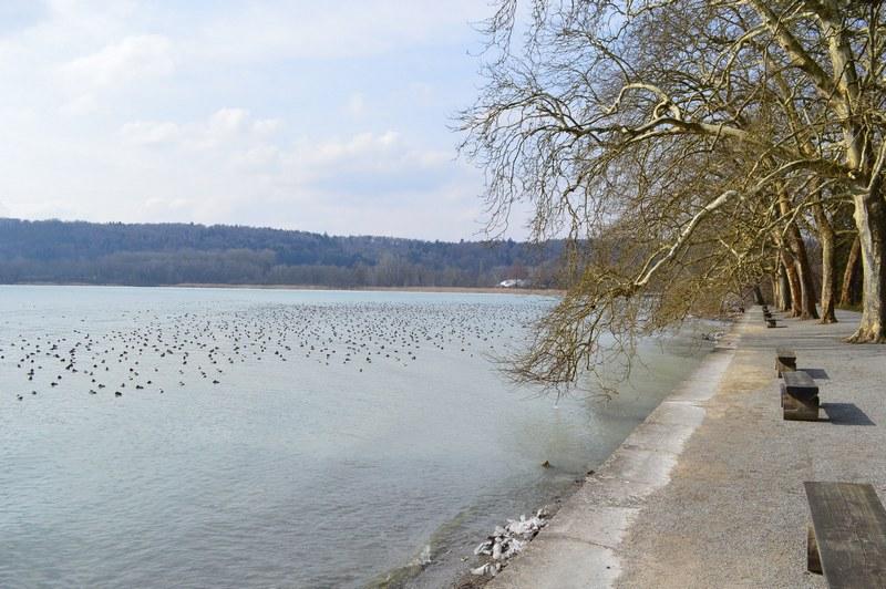 Sur la rive allemande du lac de ConstanceSur la rive allemande du lac de Constance