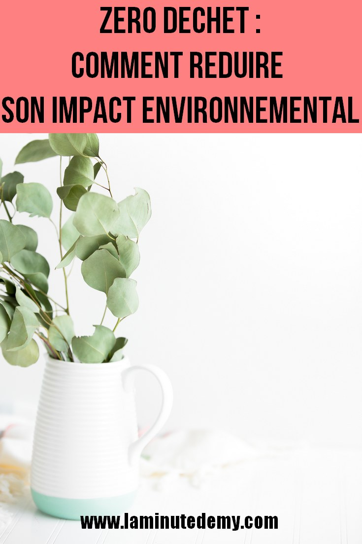 ZERO DECHET : 25 astuces pour réduire son impact environnemental