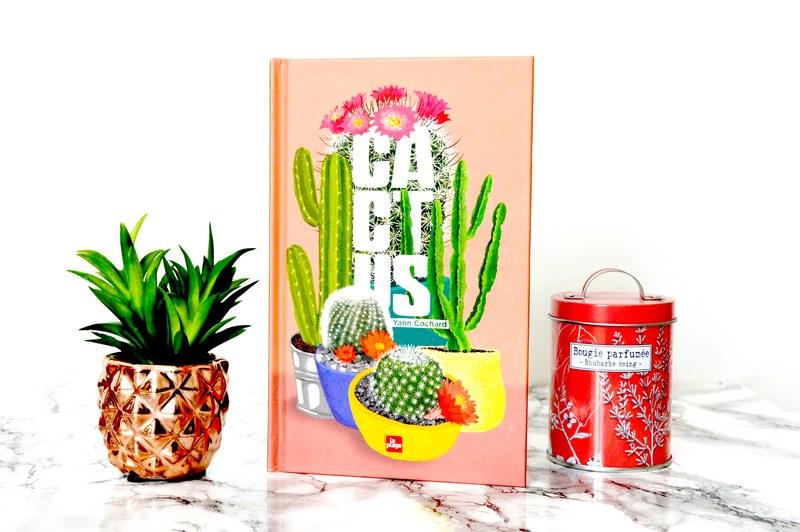 Cactus : comment bien s'en occuper ?